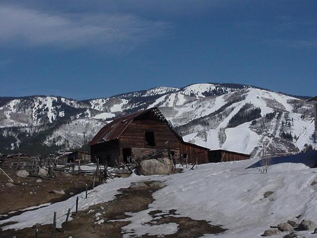 Steamboat Barn Mavica