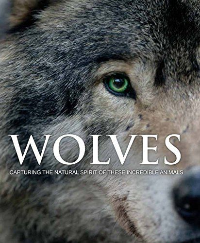 wolves by shaun ellis